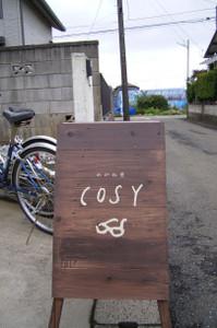 Cosy_2